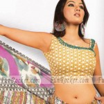 Hot-Saree-Models-19