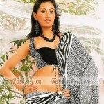 Hot-Saree-Models-23