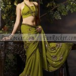 Hot-Saree-Models-29