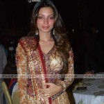 Famous-Celebrities-At-Videocon-Wedding-(FunRocker.Com)-03