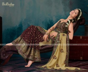 Indian Tridition Dress