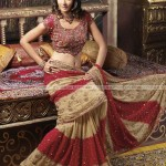 Indian-Tridition-Dress-(FunRocker.Com)-08