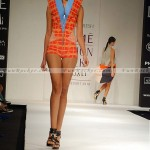 Model-Lakme-Fashion-Week-2010-(FunRocker.Com)-07