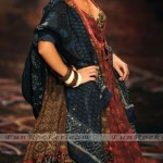 Wills-India-Fashion-Week-2010-(FunRocker.Com)-13