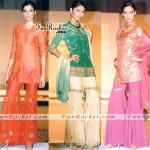 Pakistani-Sexiest-Models-Shaddi-Dresses-(FunRocker.Com)-03