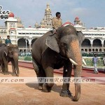 Mysore-Most-Beautiful-Places-World-(FunRocker.Com)-09