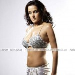 Tulip-Joshi-Sexiest-Bikini-Wallpapers-(FunRocker.Com)-01