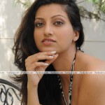 Hamsa-Nandini-Latest-Hot-PhotoShoot-(FunRocker.Com)-18