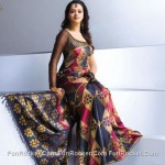 Latest Saree Designs Collection 2010