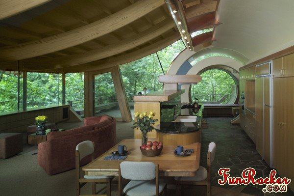 Amazing Luxury Tree Houses Pictures