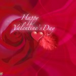 valentines-Day-2011-Pictures-(FunRocker.Com)-7