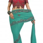 Indian-Saree-Design-2011-(FunRocker.Com)-1