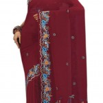 Indian-Saree-Design-2011-(FunRocker.Com)-10