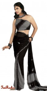 Indian-Saree-Design-2011-(FunRocker.Com)-11