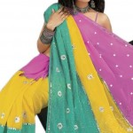 Indian-Saree-Design-2011-(FunRocker.Com)-12