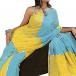 Indian-Saree-Design-2011-(FunRocker.Com)-13