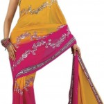Indian-Saree-Design-2011-(FunRocker.Com)-15