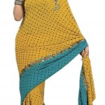 Indian-Saree-Design-2011-(FunRocker.Com)-16