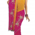 Indian-Saree-Design-2011-(FunRocker.Com)-18