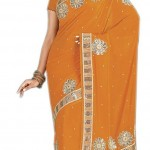 Indian-Saree-Design-2011-(FunRocker.Com)-19