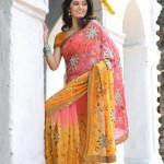Indian-Saree-Design-2011-(FunRocker.Com)-22