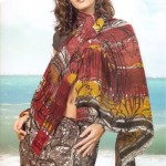 Indian-Saree-Design-2011-(FunRocker.Com)-23