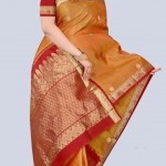 Indian-Saree-Design-2011-(FunRocker.Com)-25