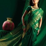 Indian-Saree-Design-2011-(FunRocker.Com)-27