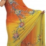 Indian-Saree-Design-2011-(FunRocker.Com)-28