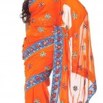 Indian-Saree-Design-2011-(FunRocker.Com)-29