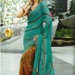 Indian-Saree-Design-2011-(FunRocker.Com)-31