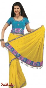 Indian-Saree-Design-2011-(FunRocker.Com)-5