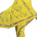 Indian-Saree-Design-2011-(FunRocker.Com)-7