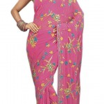 Indian-Saree-Design-2011-(FunRocker.Com)-8