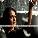 Anushka-Wallpapers-(FunRocker.Com)-2