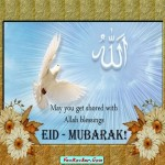 Latest-Eid-Cards-2011-(FunRocker.Com)-14