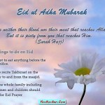 Latest-Eid-Cards-2011-(FunRocker.Com)-25