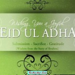 Latest-Eid-Cards-2011-(FunRocker.Com)-6