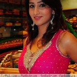 Shamili in Pink Dress Photoshoot 2012