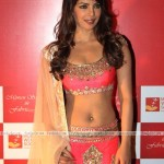 priyanka-chopra-hot-pics-(FunRocker.Com)-2