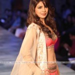 priyanka-chopra-hot-pics-(FunRocker.Com)-6