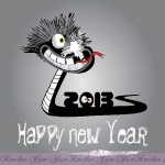 Happy-New-Year-2013-(FunRocker.Com)-32