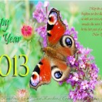 Happy-New-Year-2013-(FunRocker.Com)-45
