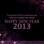 Happy-New-Year-2013-(FunRocker.Com)-8