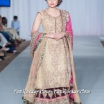 Sara-Rohale-Collection-Pakistan-Fashion-Week-London-2013-(FunRocker.Com)-11