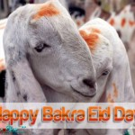 Eid-ul-Azha-2013-Greeting-Cards-(FunRocker.Com)-38