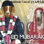 Eid-ul-Azha-2013-Greeting-Cards-(FunRocker.Com)-40