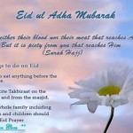 Eid-ul-Azha-2013-Greeting-Cards-(FunRocker.Com)-43