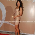 IPL Grand Haytt Hotel Red Carpet Awards