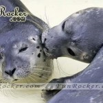Natural-Love-Pictures-(FunRocker.Com)-06